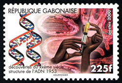 Gabon 2000_ADN